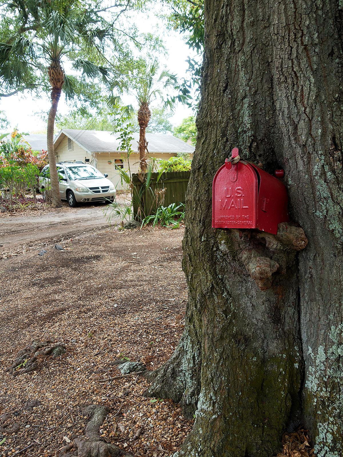 Gulfport_TreeMailbox